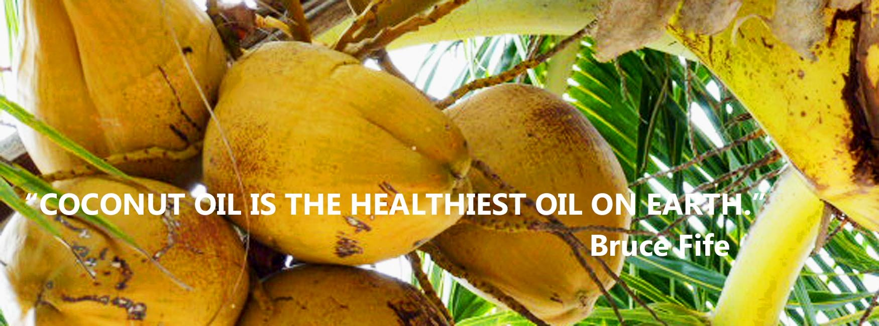 Coconut oil is one of the true gifts of nature.