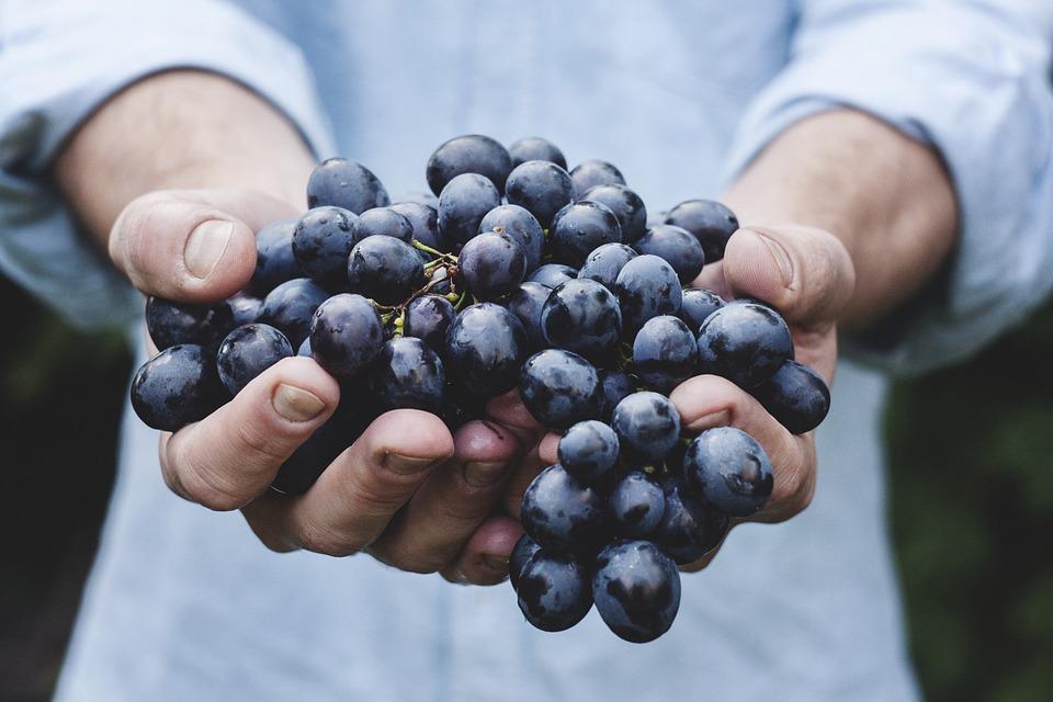 Increase your intake of food with antioxidants.