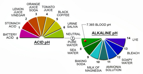 The pH scale is very simple...it is 0 - 14, with 0 - 7 being the acid side and 7 - 14 the alkaline or base scale.